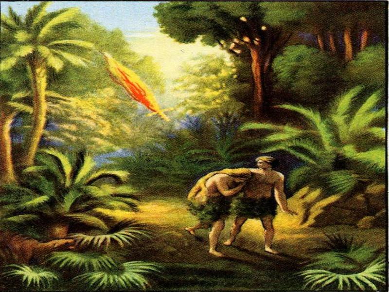 Cuadros de la creaci n obrerofiel for Adan y eva en el jardin del eden