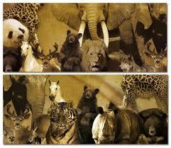 El orden protector de los grandes mamiferos