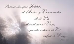 Grandes palabras del evangelio puestos los ojos en Jesus